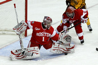 2013 Frozen Four Final-8101